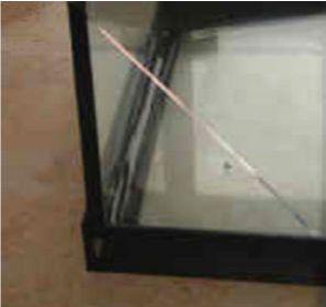 ガラス水槽は衝撃に弱く割れやすい