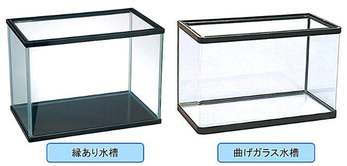曲げ加工を行うことによりガラスの接着部分をなくして観賞性を高めている曲げガラス水槽