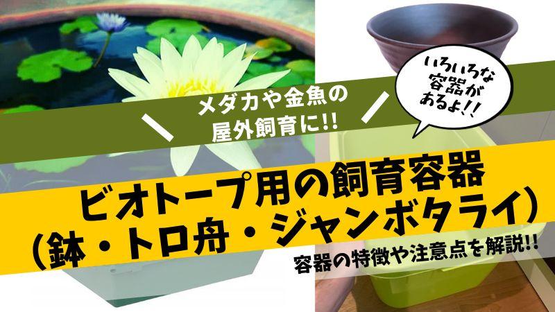 ビオトープ用の飼育容器(鉢・トロ舟・ジャンボタライ)