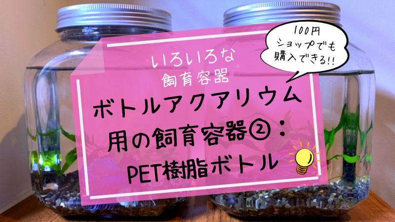 ボトルアクアリウム用の飼育容器②:PET樹脂ボトル