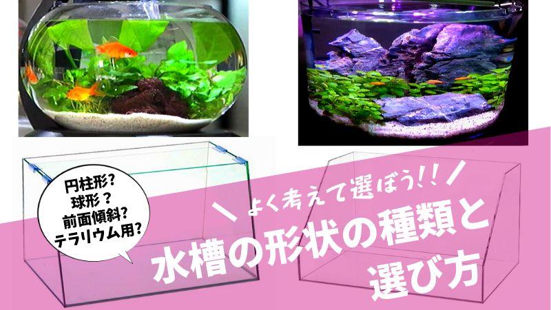 水槽の形状の種類と選び方