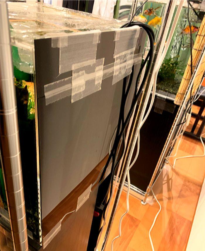 塩ビ版タイプの水槽用バックスクリーンを2枚連結して大きさを合わせて使用する