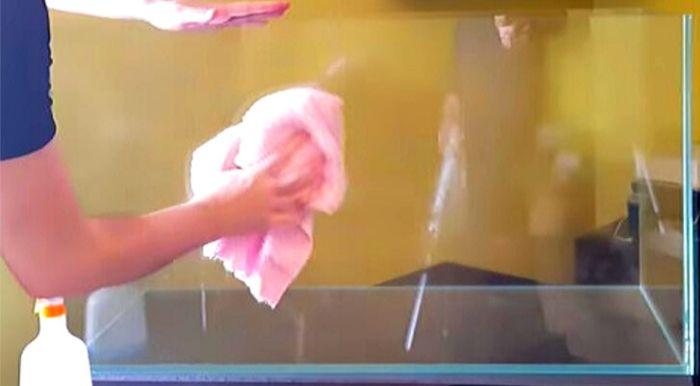 水槽用バックスクリーンを貼る前に水槽に付着しているごみや油汚れなどを拭き取ろう