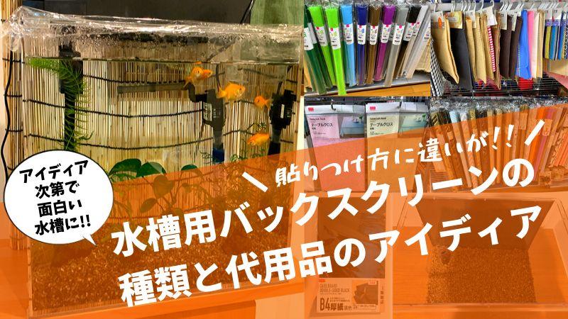 水槽用バックスクリーンの種類と代用品のアイディア