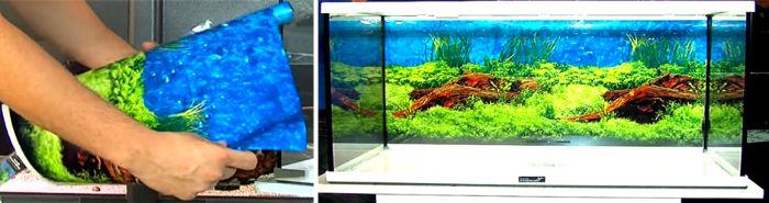 水槽用バックスクリーンとは?水槽の背面や側面に貼り付ける様々な色や柄のフィルムや板