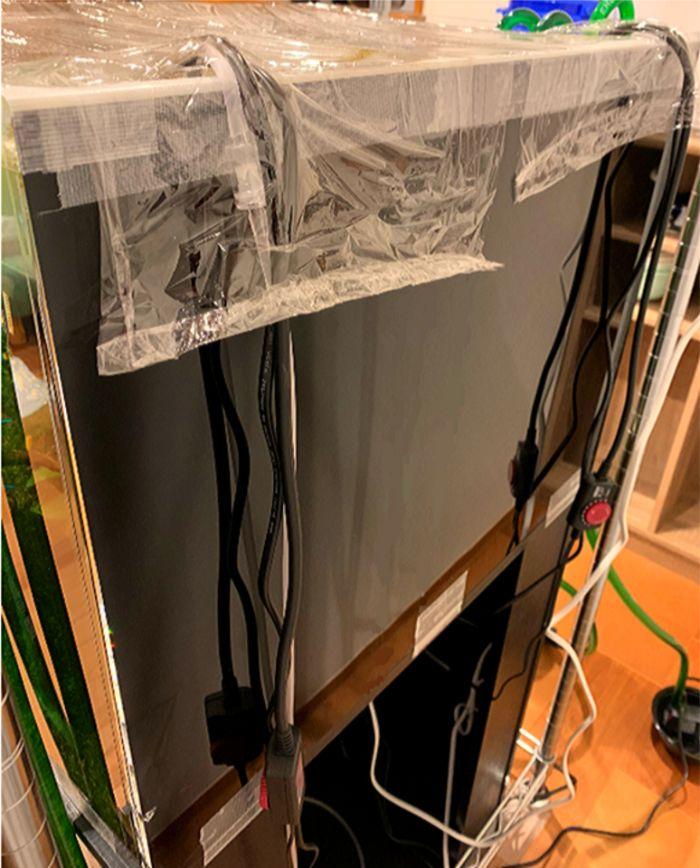 水槽用バックスクリーンでヒーターやエアレーションなどのコードやチューブ、配管を隠す
