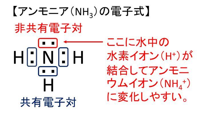 アンモニア(NH3)はアンモニウムイオン(NH4)に変化しやすい