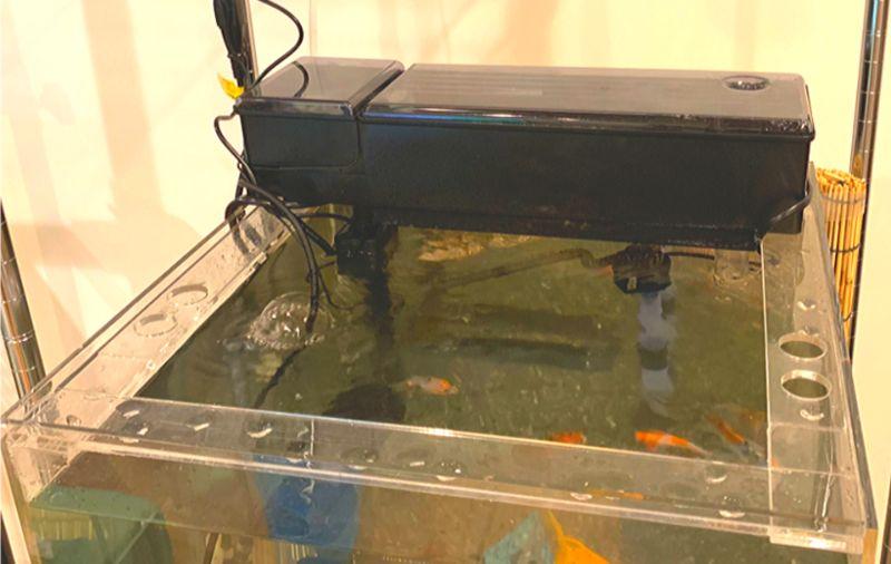 アクリル水槽にも設置できる上部式フィルター「スライドプラスフィルター」