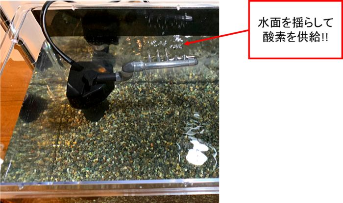 電動ポンプ方式の底面式フィルターで水面を揺らして酸素供給