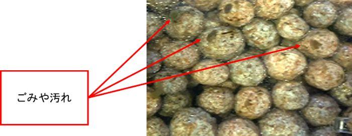 ボール状ろ材やリングろ材は物理ろ材としても働くがごみが溜まると生物濾過能力が低下する
