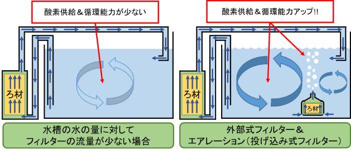 エアレーション装置を追加して水の循環量を増やして酸素供給や濾過能力をアップさせる
