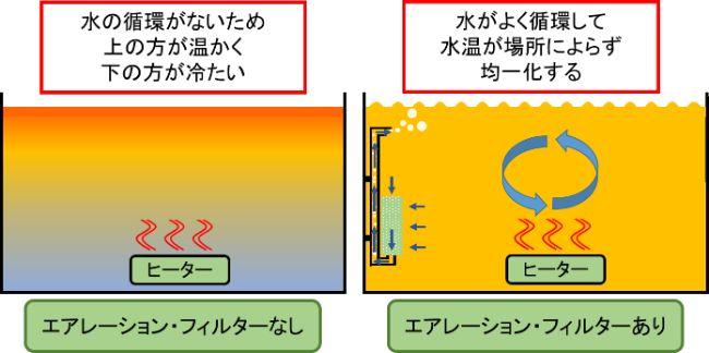 水槽用ヒーターはエアレーションやフィルターを組み合わせて使用すると水の循環や温度の均一化を促進できる