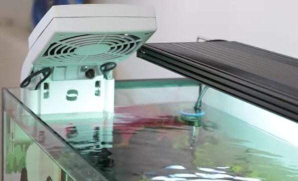 冷却ファンは水槽上部で目立つ上、水の蒸発や生体の飛び出しリスクがある