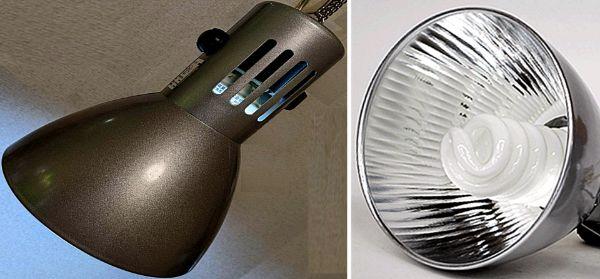 アクアリウムにおいて水槽用LEDライトが普及する前に広く使われていた蛍光灯