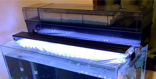 水槽用ライト(照明)で水槽を明るく照らして観賞性アップ