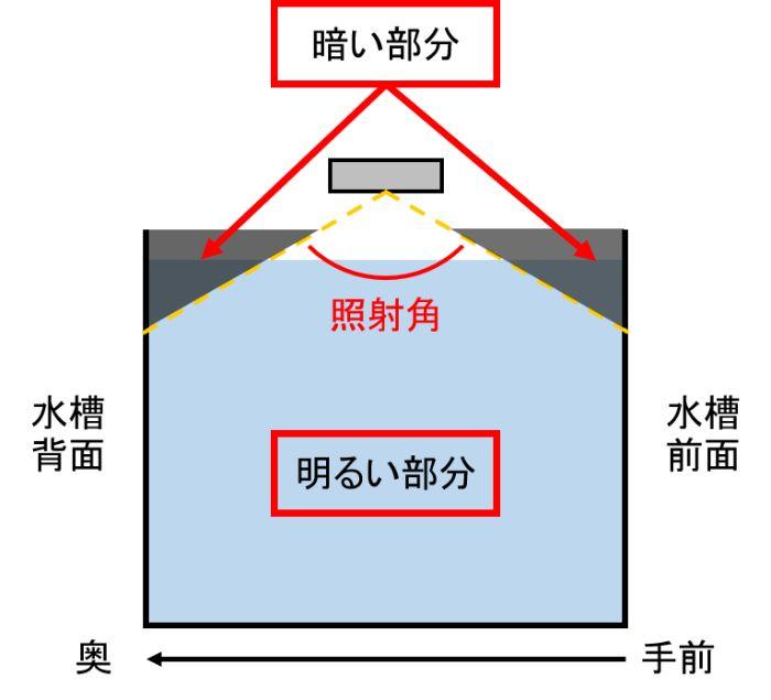 水槽用ライトは水槽全体が照らされるように照射角にも注意しよう
