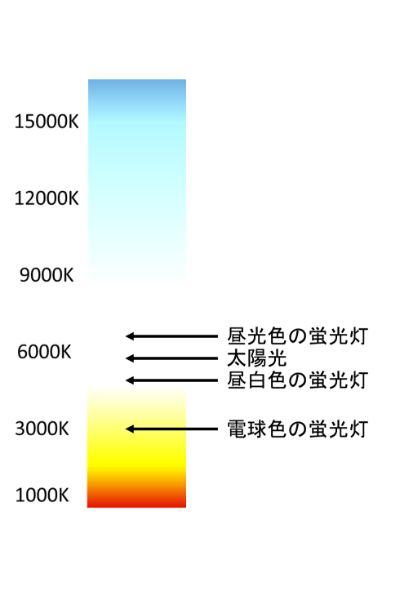 水槽用ライトを選ぶ際には色温度-K(ケルビン)にも注目しよう