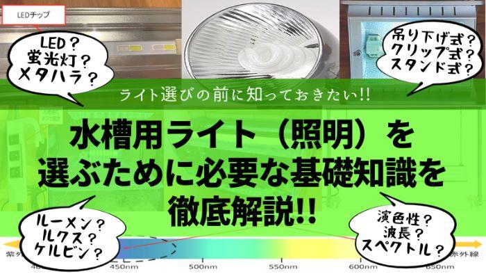 水槽用ライト(照明)を選ぶために必要な基礎知識を徹底解説
