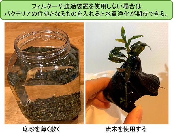 底砂や流木を使用するとバクテリアの住処となり水質浄化の効果が期待できる