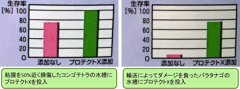 粘膜に物理的なダメージを受けた後に粘膜保護剤であるプロテクトXを使用すると生残率が向上する